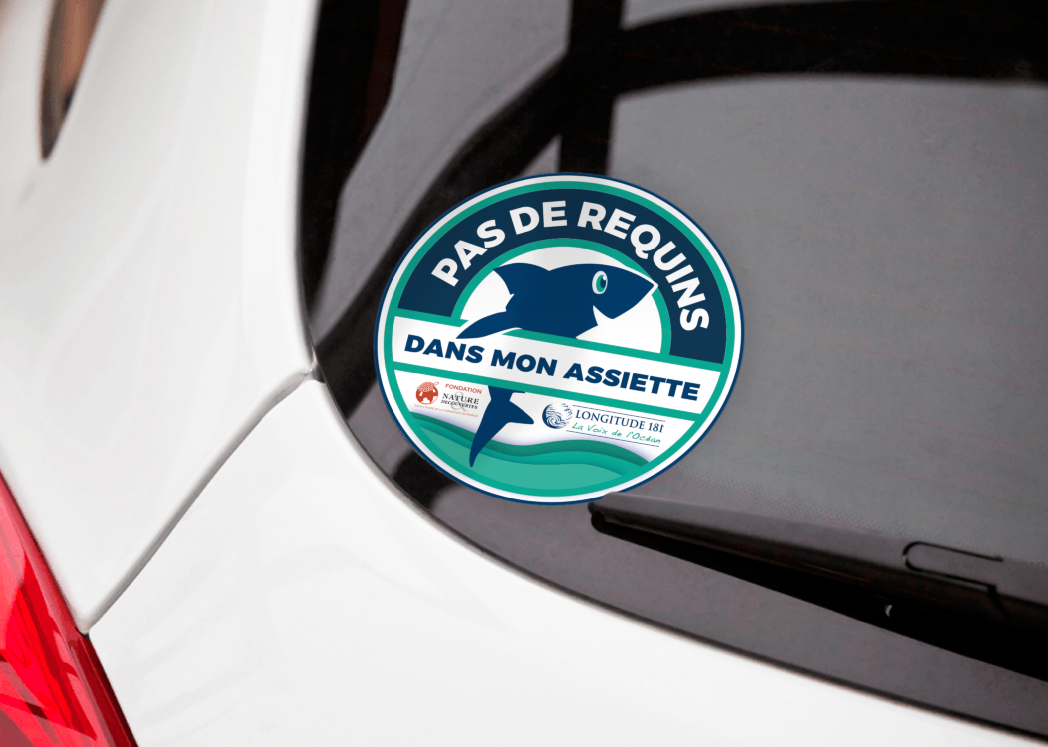 longitude_Stickers_campagne_requins